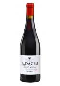 Badaceli 2015