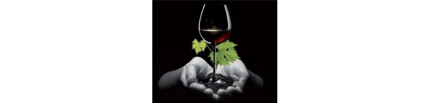 Vino Ecólogico